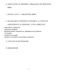 Turismul – Factor de Dezvoltare Rurala in Microzona Sibiel, Judetul Sibiu - Pagina 3