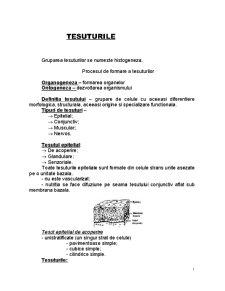 Tesuturile - Pagina 1