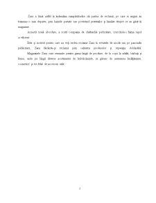 Comportamentul Consumatorului - Zara - Pagina 2