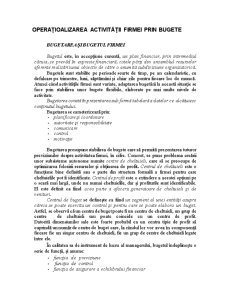 Operațioalizarea Activității Firmei prin Bugete - Pagina 1