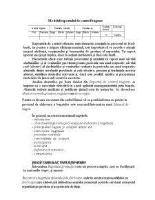 Operațioalizarea Activității Firmei prin Bugete - Pagina 5
