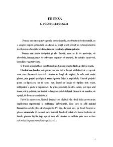 Frunza - Pagina 4