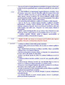 Calendarul Legumicultorului - Pagina 3