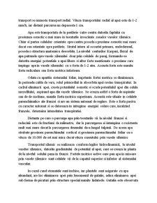 Transportul Apei în Corpul Plantei - Pagina 5