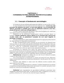 Evaluarea Intreprinderii - Pagina 3