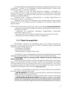 Evaluarea Intreprinderii - Pagina 5