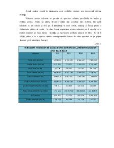 Analiza Portofoliului de Credite MoldindConBank - Pagina 3