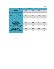 Analiza Portofoliului de Credite MoldindConBank - Pagina 4
