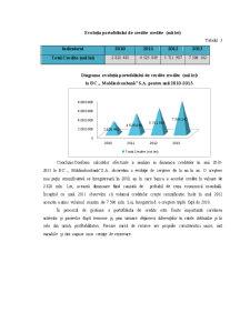 Analiza Portofoliului de Credite MoldindConBank - Pagina 5
