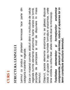 Anatomia Lemnului - Pagina 2