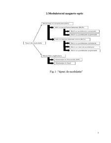 Modulatoarele Magneto-Optice - Pagina 3