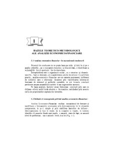 Analiza Economica-Financiara - Pagina 2