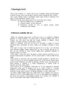 Tehnologia Obtinerii Berii - Pagina 2
