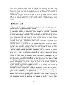 Tehnologia Obtinerii Berii - Pagina 3
