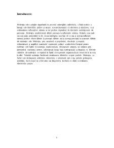 Modalități de Influențare a Motivării Subordonaților cu Ajutorul Teoriei nevoi-obiective la Nivelul Unităților Militare - Pagina 3