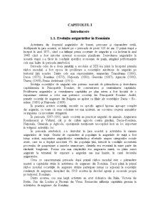 Asigurarile de Bunuri Apartinand Persoanelor Fizice in Romania (XYZ SA) - Pagina 3