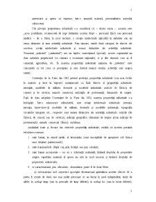 Antreprenoriatul și Dreptul de Proprietate Intelectuală - Pagina 3