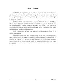 Pielea - Pagina 2