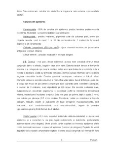 Pielea - Pagina 5
