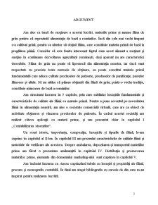Atestat Profesional - Faina ca Materia Prima - Pagina 3