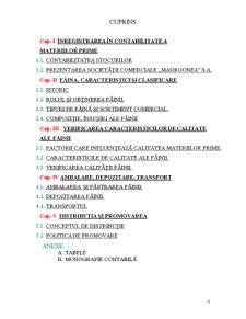 Atestat Profesional - Faina ca Materia Prima - Pagina 4