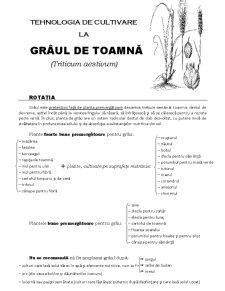 Tehnologia de cultivare la grâul de toamnă - Pagina 1