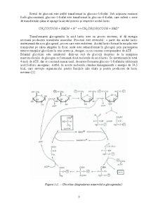 Acid lactic - Pagina 5