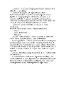Atletism - Bazele Tehnicii Sariturii - Pagina 4