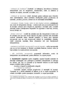 Structurile Situațiilor Financiare - Pagina 2