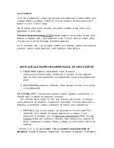 Drept civil - curs 1 - Pagina 4