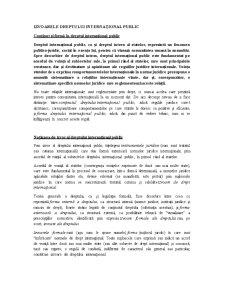 Izvoarele dreptului internațional public - Pagina 1