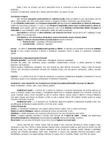 Analiza senzoriala - Pagina 5