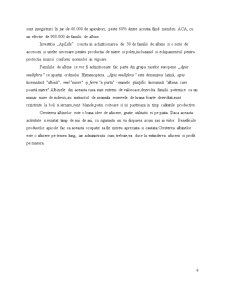 Plan de afaceri apicultura - Pagina 2