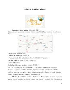 Plan de afaceri apicultura - Pagina 3