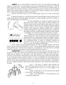 Compoziția chimică a făinii - Pagina 5
