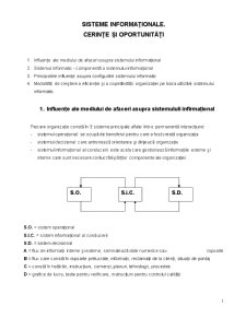 Sisteme Informationale. Cerinte si Oportunitati - Pagina 1