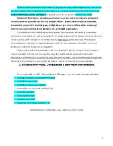 Sisteme Informationale. Cerinte si Oportunitati - Pagina 2