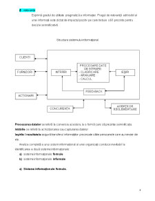 Sisteme Informationale. Cerinte si Oportunitati - Pagina 4