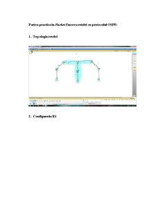 Retea cu protocol OSPF - Pagina 4