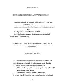 Intocmirea si prezentarea situatiilor financiare anuale - Pagina 2