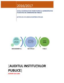 Auditul instituțiilor publice - Pagina 1
