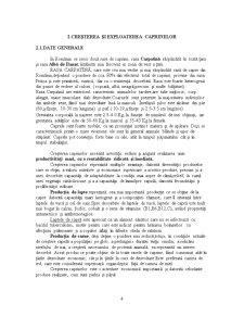 Constructii Agricole - Ferma de Caprine - Pagina 4