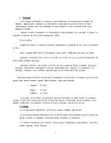 Bloc de locuinte cu D+P+3E+M si imprejmuire - Pagina 2