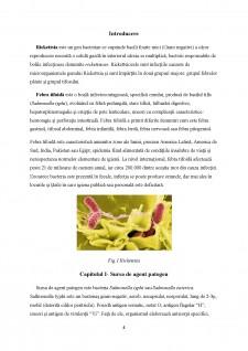 Epidemiologia bolilor provocate de Rickettsia - Pagina 4