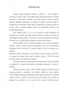 Protectia copilului in legislatia romana si internationala - Pagina 2