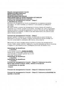 Managementul riscurilor - Pagina 4