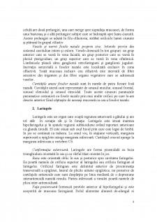 Sistemul respirator - Pagina 4