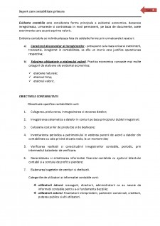 Contabilitate primara - Pagina 4