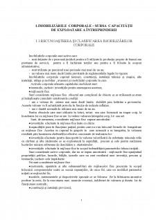 Contabilitatea imobilizărilor corporale - Pagina 3