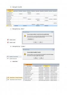 Baze de date bancare - studiu de caz ING România - Pagina 5